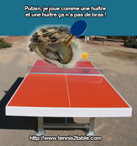 Huitre Ping Pong